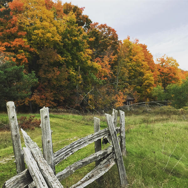 Autumn Hike by smokegirl