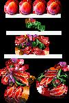 Carnation showcase