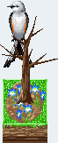 Scissor-tailed flycatcher f by Shirukiba