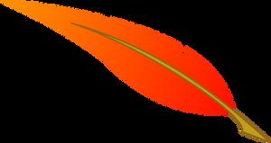 Vector: Philomena feather