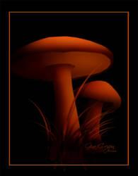 Mushrooms by Moonlight by itsurdestiny