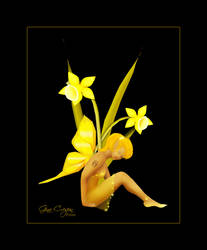 Daffodil by itsurdestiny