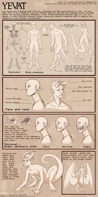 YEVAT - Anatomy sheet