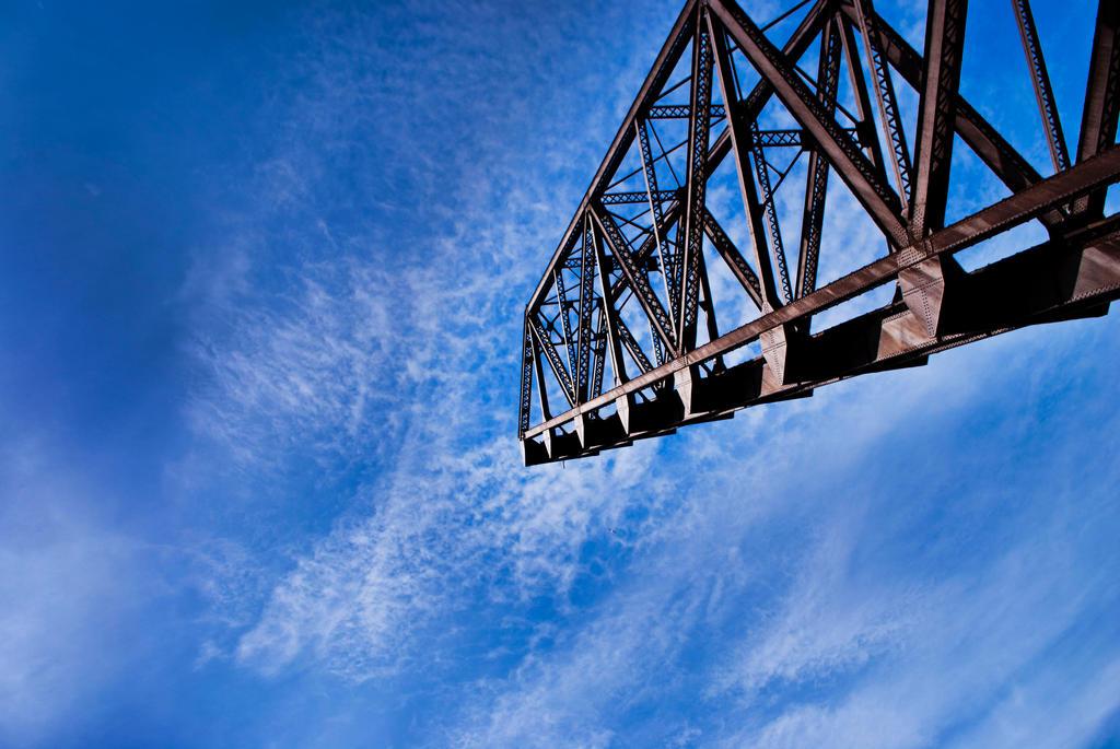 Crane by Aleesuhn