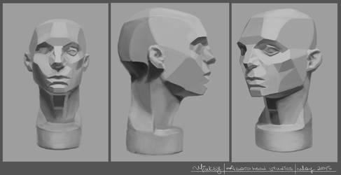 Asaro head studies