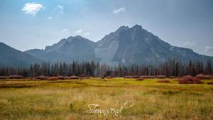 Sawtooth Meadow 0513-E