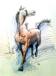 horse by KuzAnna