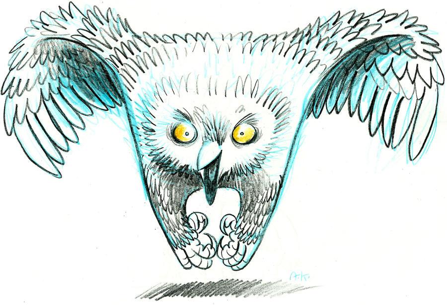 Owl by KuzAnna