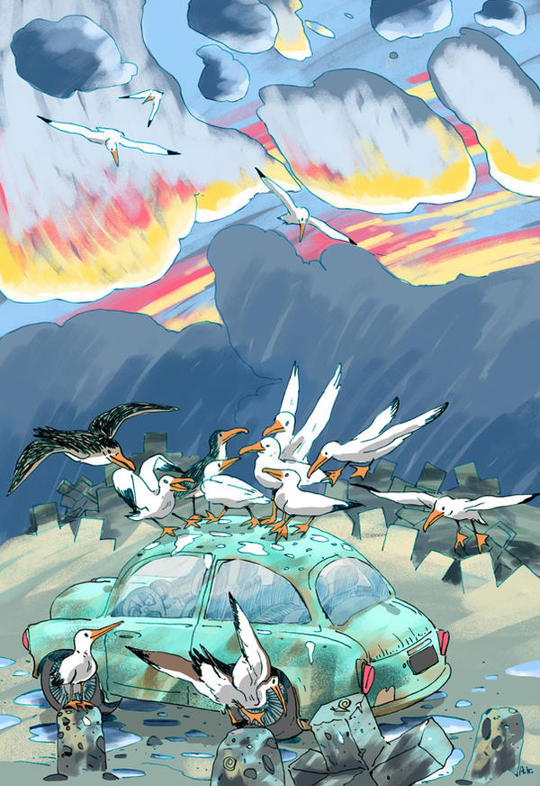 Seagulls and car by KuzAnna