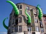 octopied building