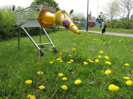 grazing shopping trolley