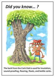 Did You Know: Cork Oak
