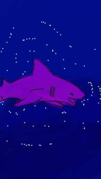 Prince Shark