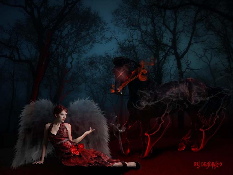 Angel and Night-mare