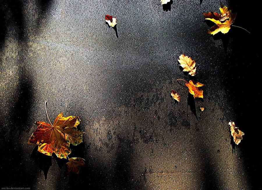 Falling leaves I by Ani-ko