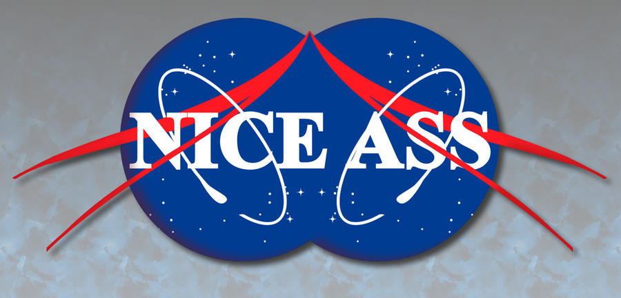 Nasa Logo Parody by dfksone on DeviantArt