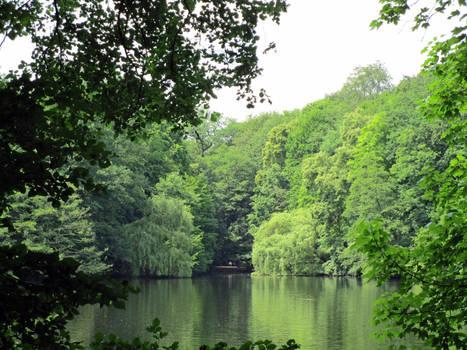 Weeping Willows framing the Lake