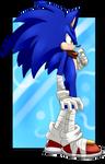 Birthday gift: Sonic Boom