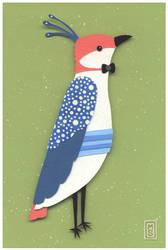 A Dapper Bird by renton1313