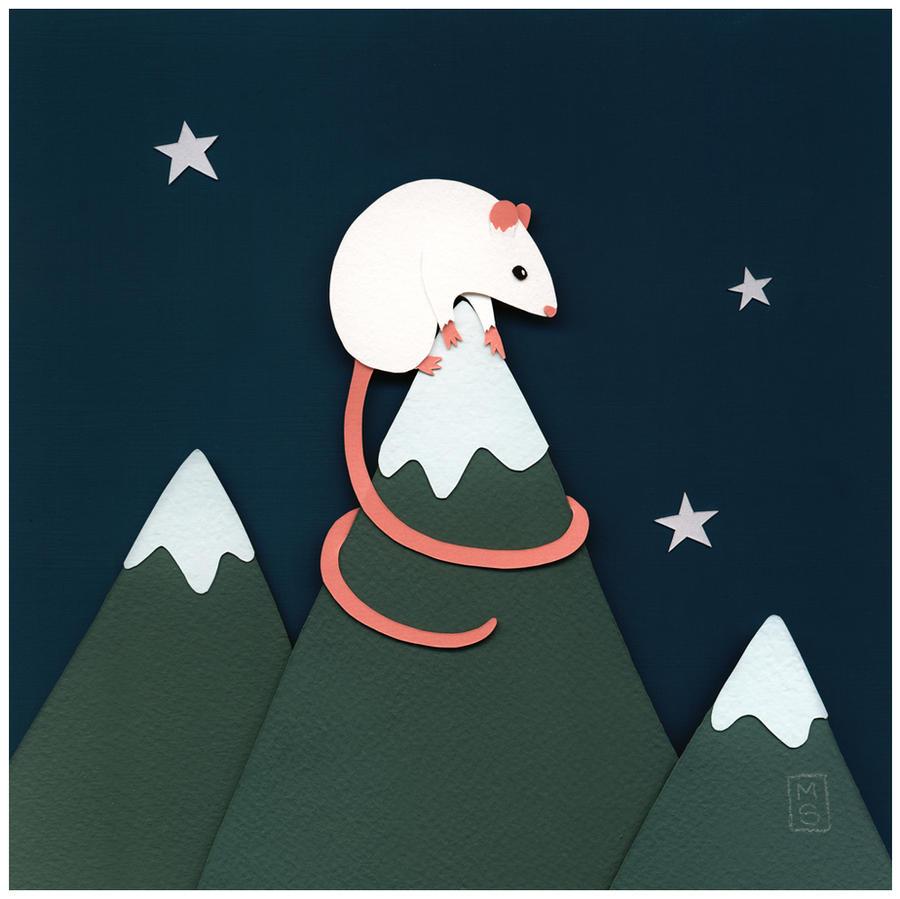 Night on Mouse Mountain