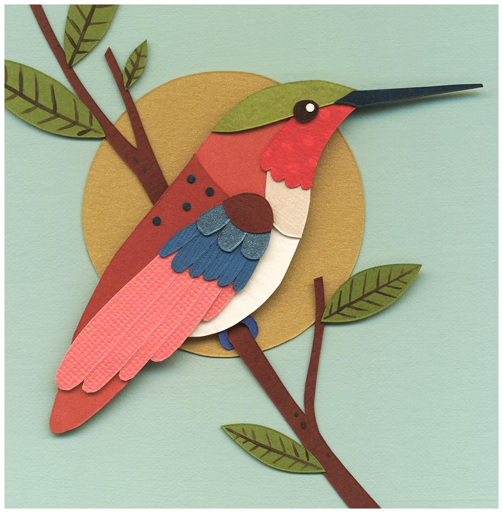 Hummingbird 2 by renton1313
