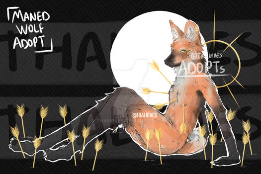 [CLOSED] Adoptable Maned Wolf !