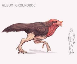 Theoretical Birds Album Groundroc