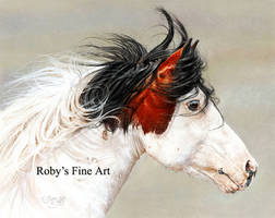 'Wind Chaser' - Realism by robybaer