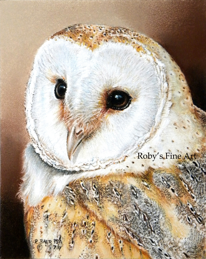 'Barn Owl' - Realism by robybaer
