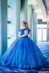 Cinderella 2015 Cosplay at D23