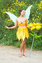 Pixie Hollow Iridessa Cosplay Costume by glimmerwood
