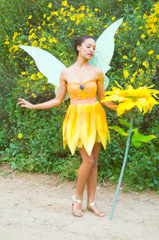 Pixie Hollow Iridessa Cosplay Costume