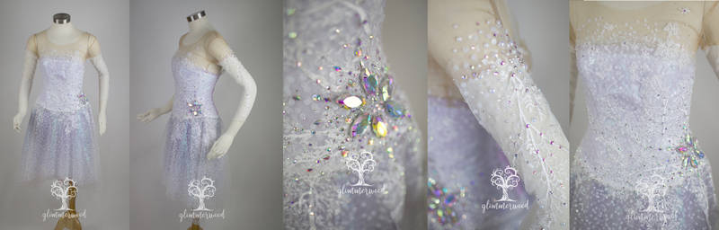 Show Yourself Elsa Sparkly Cosplay Dress