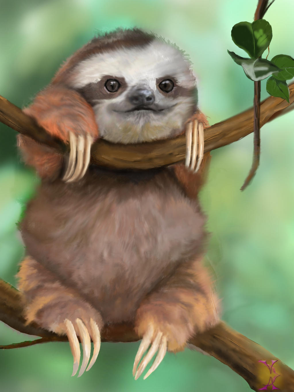 baby sloth by violetadams on deviantart