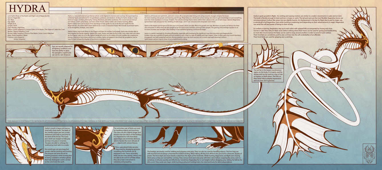 Lord Hydra Reference Sheet by Skysealer