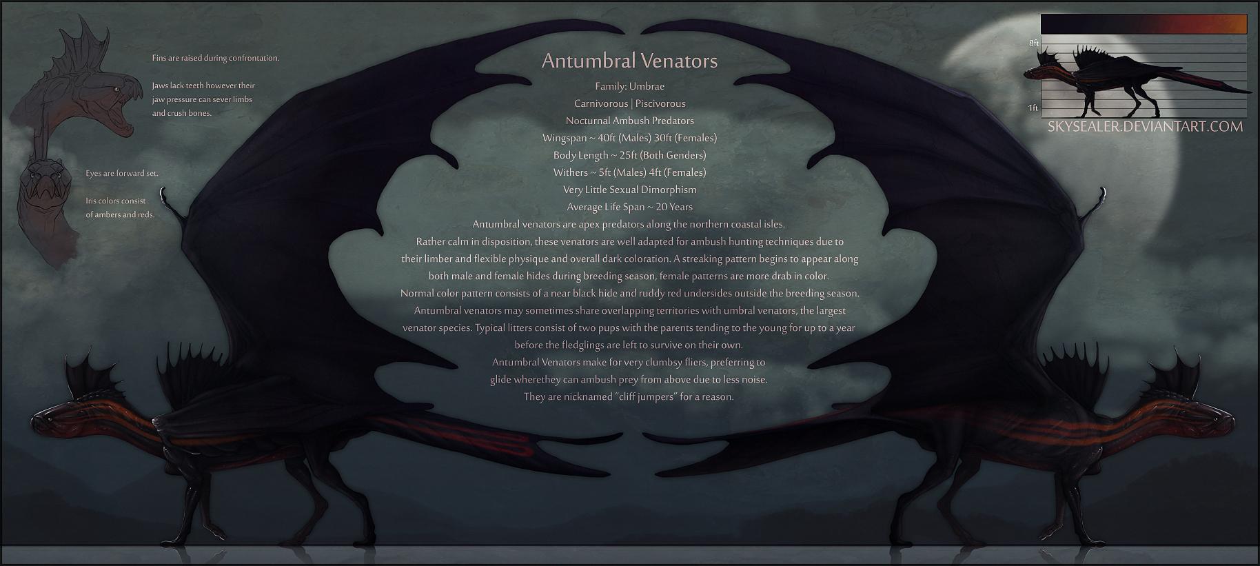 Antumbral Venators - Sketch Ref by Skysealer