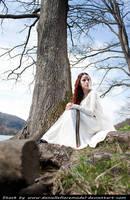 Avalon Fantasy Stock IV by DanielleFiore