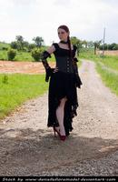 Black Lace Stock V by DanielleFiore