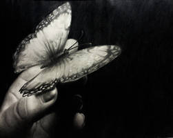 On a Butterfly's Wings by wendythewilf