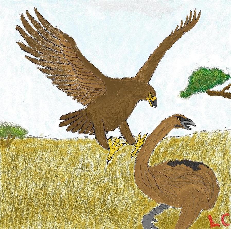 MS Paint: Haast Eagle attacks Moa by ZEECAPTEIN on DeviantArt