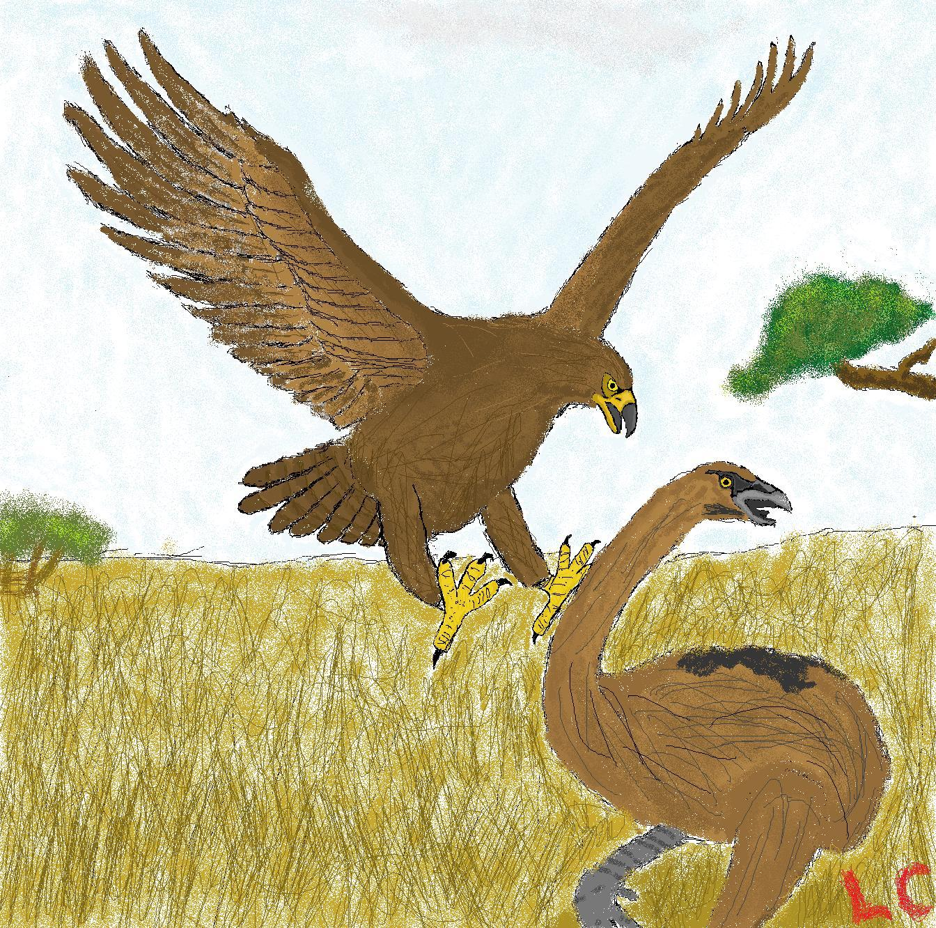 MS Paint: Haast Eagle attacks Moa by ZEECAPTEIN on DeviantArt