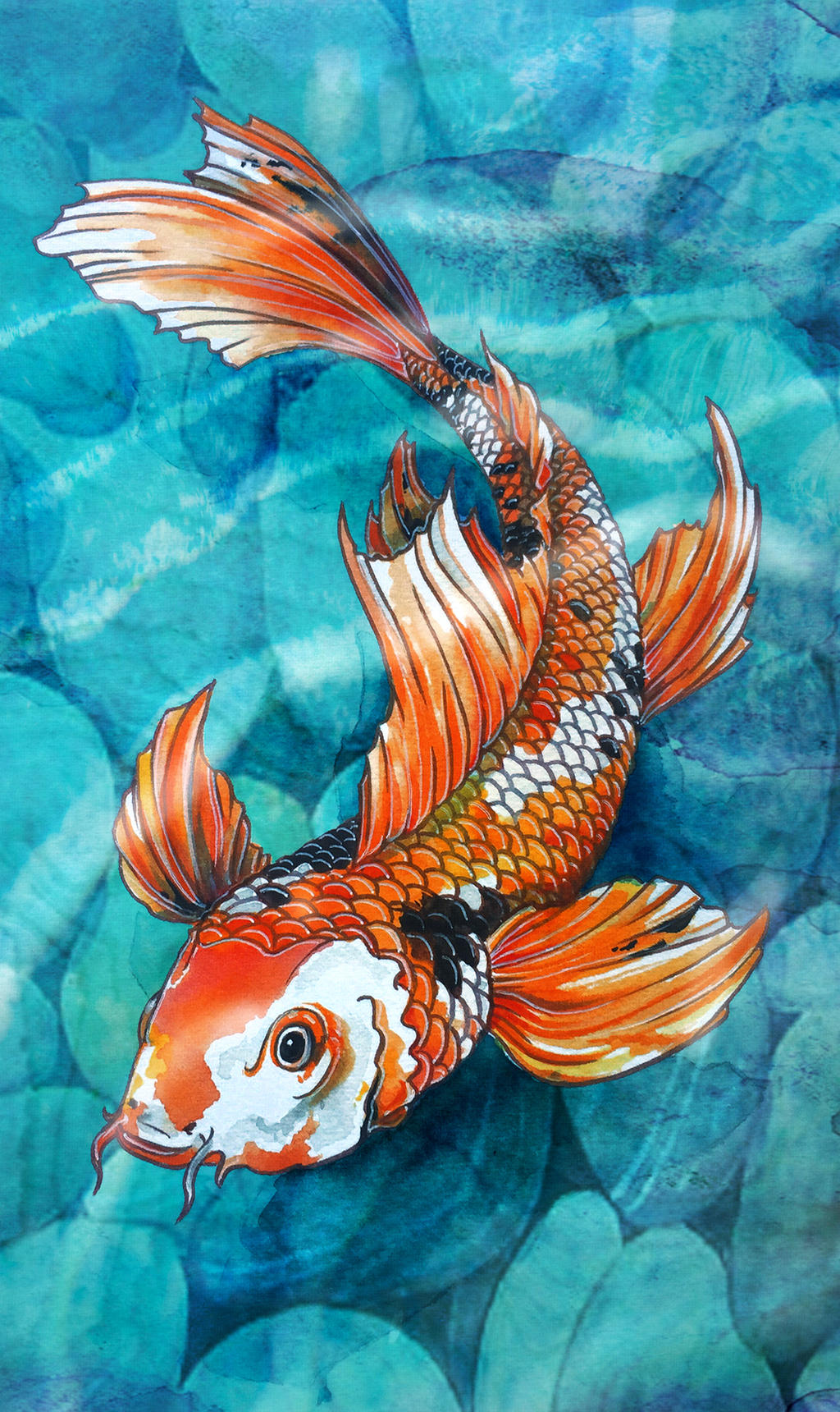 Koi by dacdacgirl on deviantart for Where can i buy koi fish