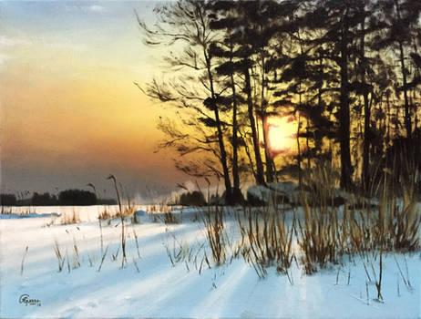 Hiding Sun on a Finnish Winter