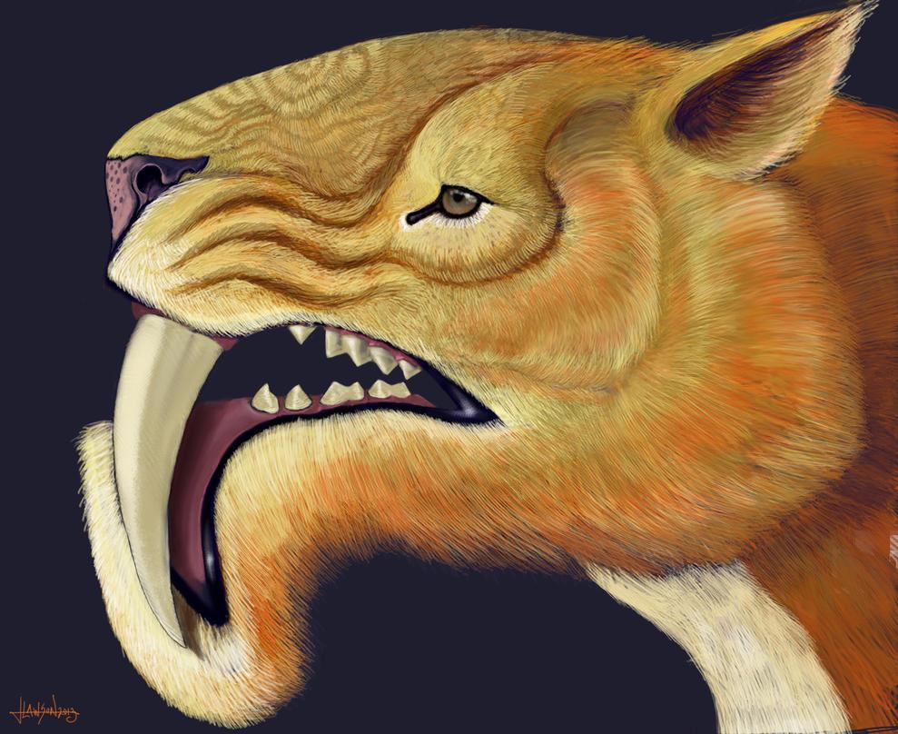 Thylacosmilus by AgentPendergast