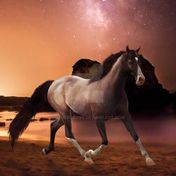 Galatic Dream