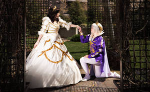 The Proposal by sumikins