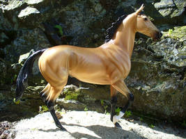 Confidence, Breyer Horse by anniehorselover