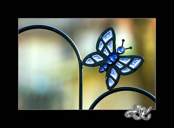 Blue Butterfly by minainerz