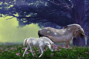 Fjord Unicorns by OH-GOD-ITS-MY-MOM