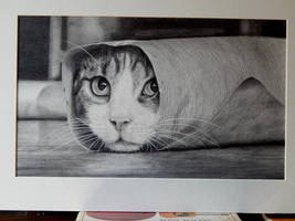 Hyperrealism Silly sausage!